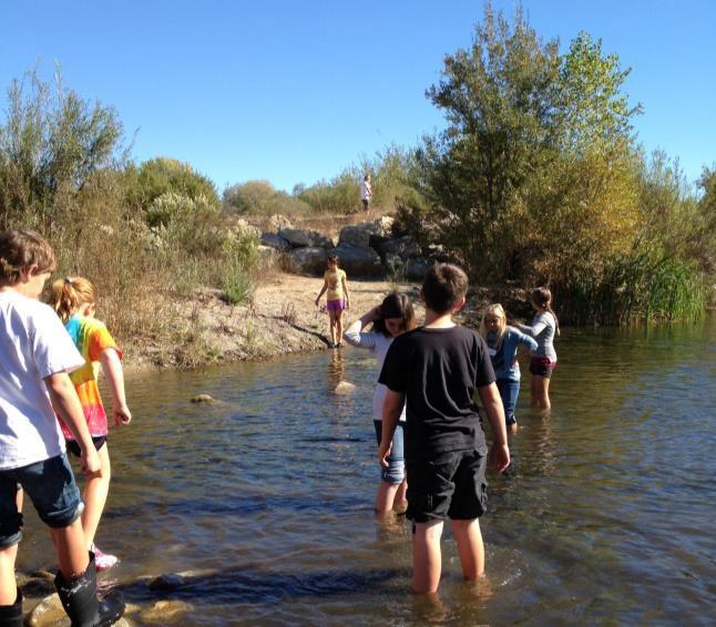 Santa ynez river at alisal road syv naturetrack foundation santa ynez river at alisal road syv freerunsca Gallery